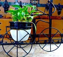 Pothos Plant Rides Her Trike Bike by Jonathan  Green