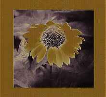 Whimsical Daisy by Karen Lewis