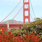 Golden Gate Bridge by Eirinn