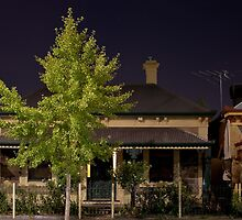 Gilles Street with Ginkgo Tree by sedge808