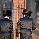 Ohel of Rabbi Elimelech Weisblum of Lizhensk . Hasidic Leadership . From my Midrasz . by © Andrzej Goszcz,M.D. Ph.D