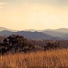 Brindabella Ranges by Bill  Russo