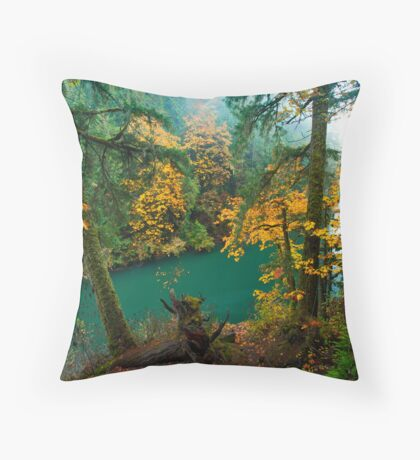 Turquoise and Mist Throw Pillow