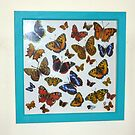 New Butterfly Collection by Holly Daniels