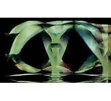 clonosphere Photographic Print