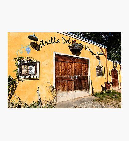 New Mexico Vineyards Photographic Print