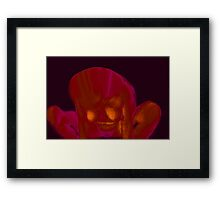 Fire Side 3a Framed Print