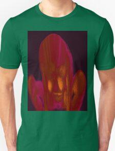 Fire Side 3a T-Shirt