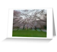 Cherry Blossom Abstract Greeting Card