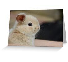 Adorabunny Greeting Card