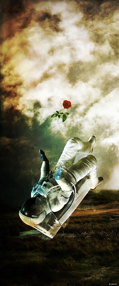 ..Farewell.. by Shane Gallagher