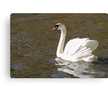 Peace and Gentleness Canvas Print