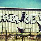 Papa Joe's by Kingstonshots