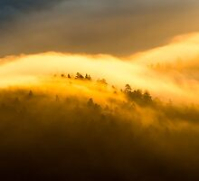 Morning Fire Detail - Great Smoky Mountains National Park, North Carolina by Jason Heritage