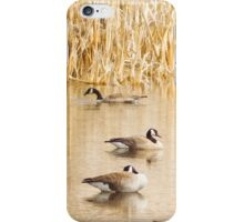 Golden Geese iphone iPhone Case/Skin