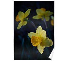 Spring Triplets Poster