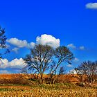 Wisconsin by EBArt