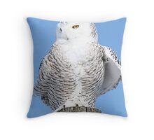 Archetypal Throw Pillow