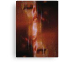 XXX6 Canvas Print