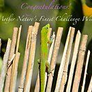 Mother Nature's Finest Challenge Winner Banner by Vanessa Rooke