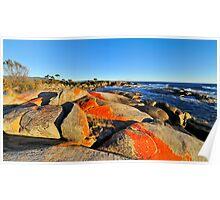 Fiery Dawn, Binalong Bay, Bay of Fires Tasmania Poster