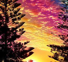 pine dusk by vampvamp