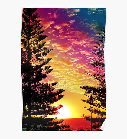 pine dusk Poster