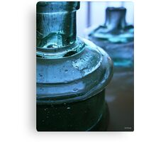 Two Blue Bottles Canvas Print
