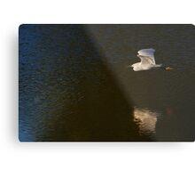 Into the Light - Snowy Egret Metal Print