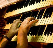 0354 Organist by Pitt Street  Uniting Church, Sydney