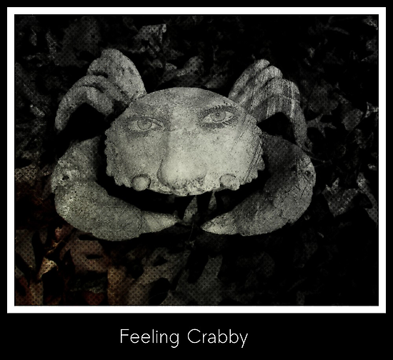 Feeling Crabby by Adrena87