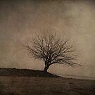 standing alone by Daphne Kotsiani