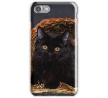 Fall Portrait - Black Cat in a Cornucopia - Animal Rescue Portraits iPhone Case/Skin