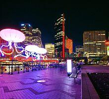 Sydney Skyline - Vivid Sydney Festival by Ross Campbell