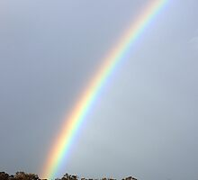 Vivid Rainbow by Ross Campbell