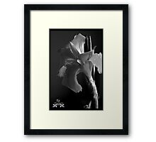 Texture in Dark Framed Print