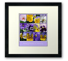 Happy Faces... Framed Print