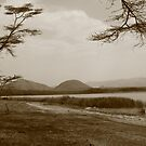 lake elementatita in monochrome by Karue