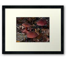 Mushroom Kingdom (3968) Framed Print