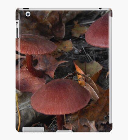 Mushroom Kingdom (3968) iPad Case/Skin