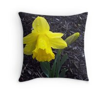Welcome Spring in Glorious Color Throw Pillow