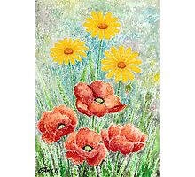 POPPIES AND YELLOW DAISIES - AQUAREL Photographic Print