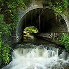 Corbett's Glen Park by Jeff Palm Photography