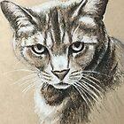 Kitty by Ray Jackson