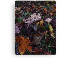 Mushroom Kingdom (3919) Canvas Print