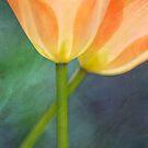 Joy of spring IV by Maria Ismanah Schulze-Vorberg