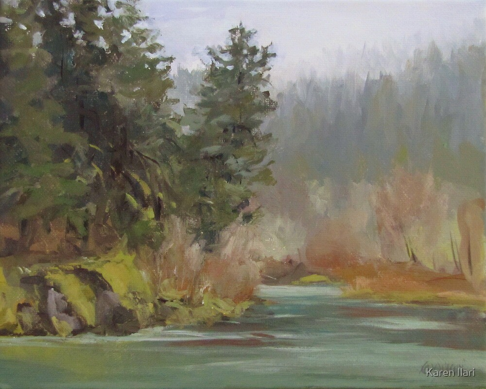 Winter at Swiftwater by Karen Ilari