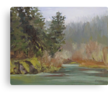 Winter at Swiftwater Canvas Print