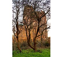 City Of Liverpool, Anglican Cathedral .. Photographic Print