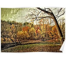 Distressed Fall Scene Maryland Poster